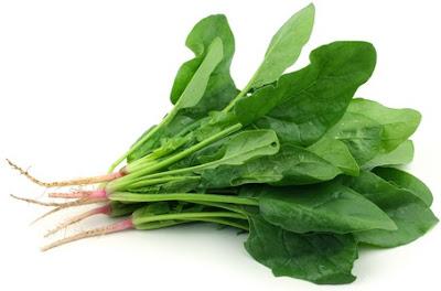 Foto de la espinaca con raiz