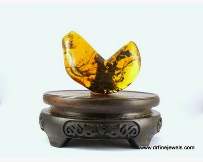 amber with insects