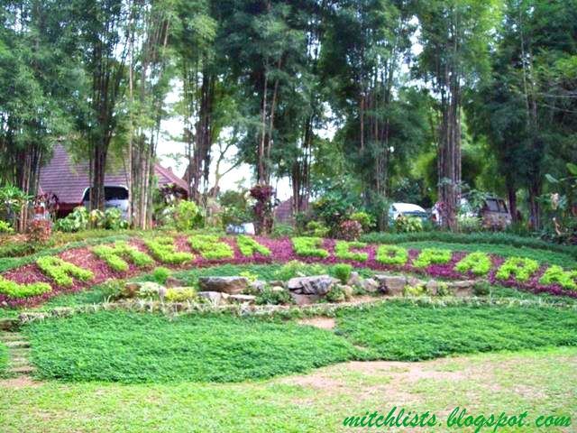 La mesa ecopark round tripinay - La mesa eco park swimming pool photos ...