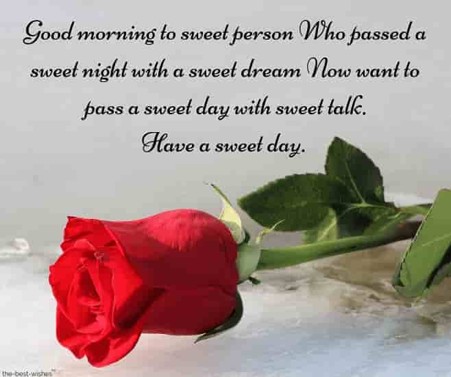 sweet sms to sweet person with red rose
