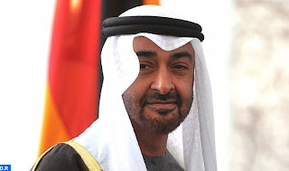 Abu Dhabi Crown Prince discusses cooperation with IAEA chief