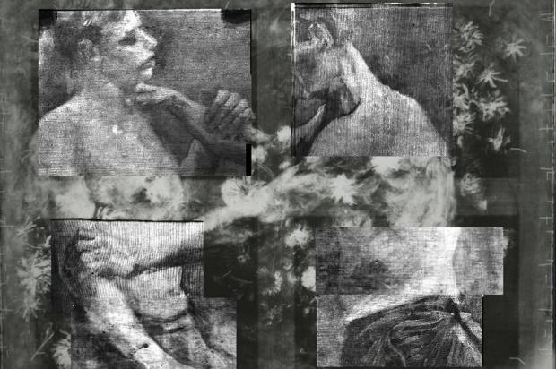 Van Gogh pintou flores campestres que escondiam desenho de dois lutadores