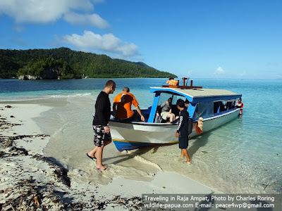 Adventure tour for snorkeling and birding as well as sightseeing in Raja Ampat