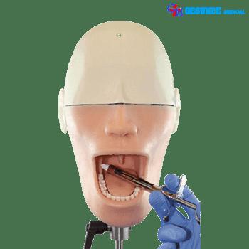 Manikin Oral Anesthesia GM-100U
