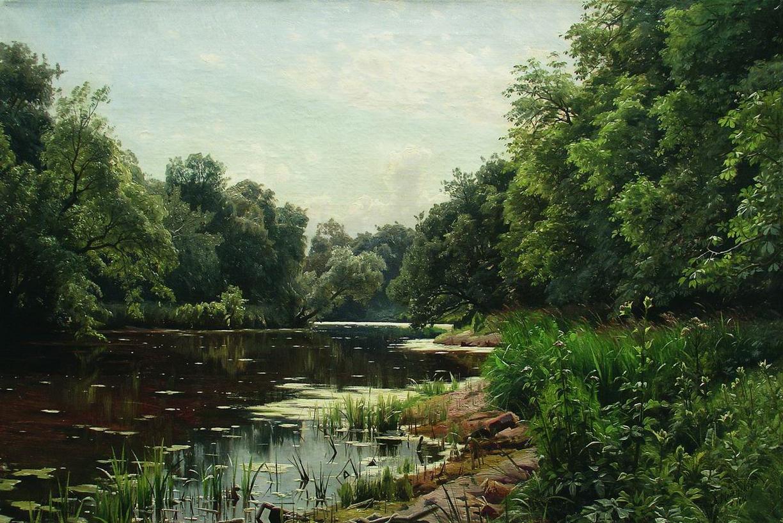 Фото озеро с кувшинками