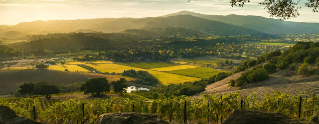 Travelhoteltours has amazing deals on Sonoma County Vacation Packages. Save up to $583 when you book a flight and hotel together for Sonoma County. Extra cash during your Sonoma County stay means more fun! This region of bounty has fine wines, redwood forests, long beaches, secluded coves, parks that preserve nature and history, and a thriving cultural scene.