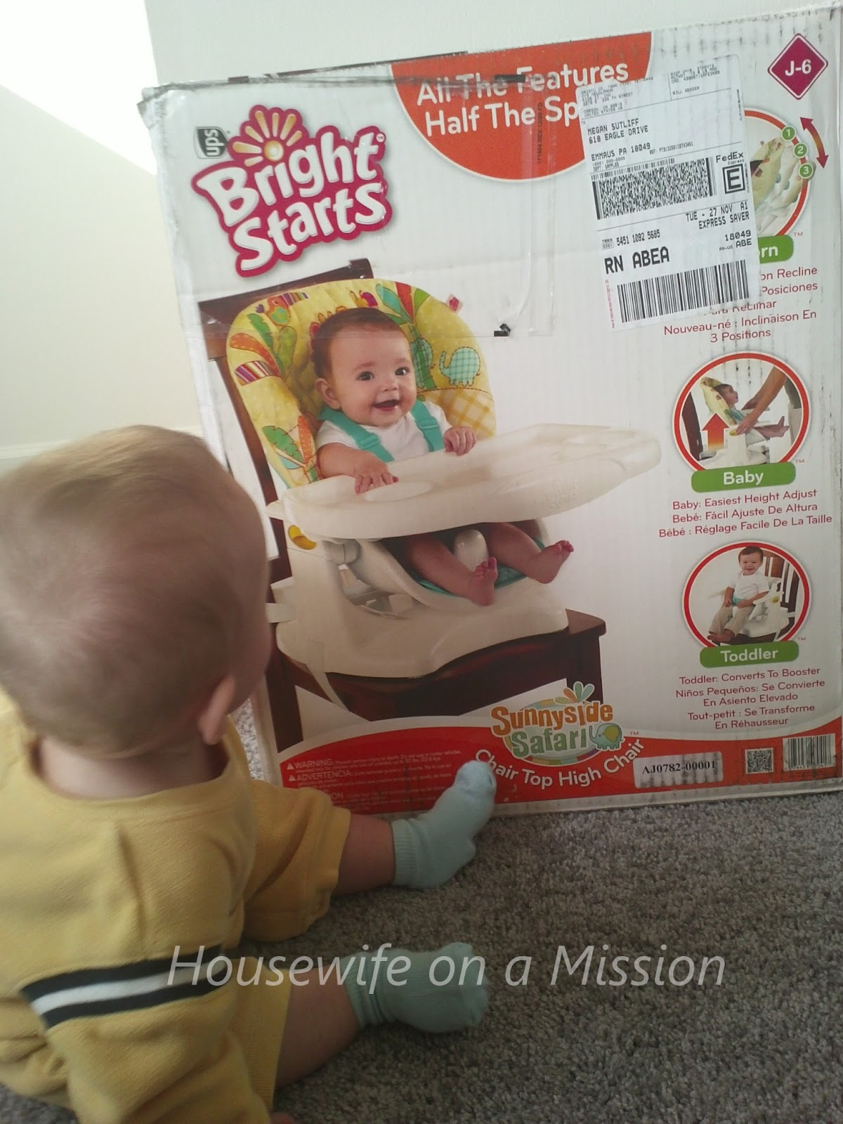 bright starts high chair wheelchair hire sydney sunnyside safari top review