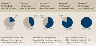 Vanguard Lifestrategy 80 >> Diy Investor Uk Vanguard Lifestrategy 60 Year 3 Update
