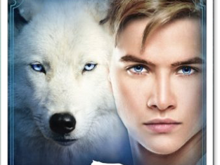 [REZENSION] Academy of Shapeshifters - Wolfspack