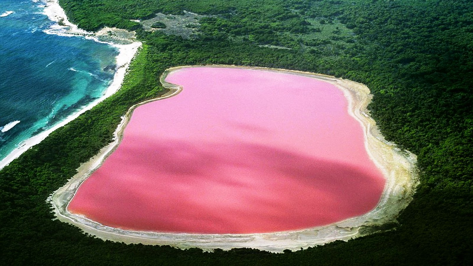 But I Doubt You Would Ever Ociate The Color Pink With Of Body Water If Traveling Over Western Islands Australia This Unbelievable