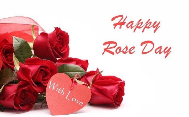 today rose day, february 7 rose day images