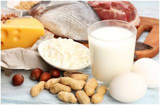 Sumber Bahan Makanan yang Mengandung Protein dan Serat Tinggi