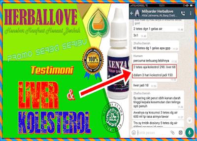 Testimoni Xenza Gold Untuk Liver & Kolesterol