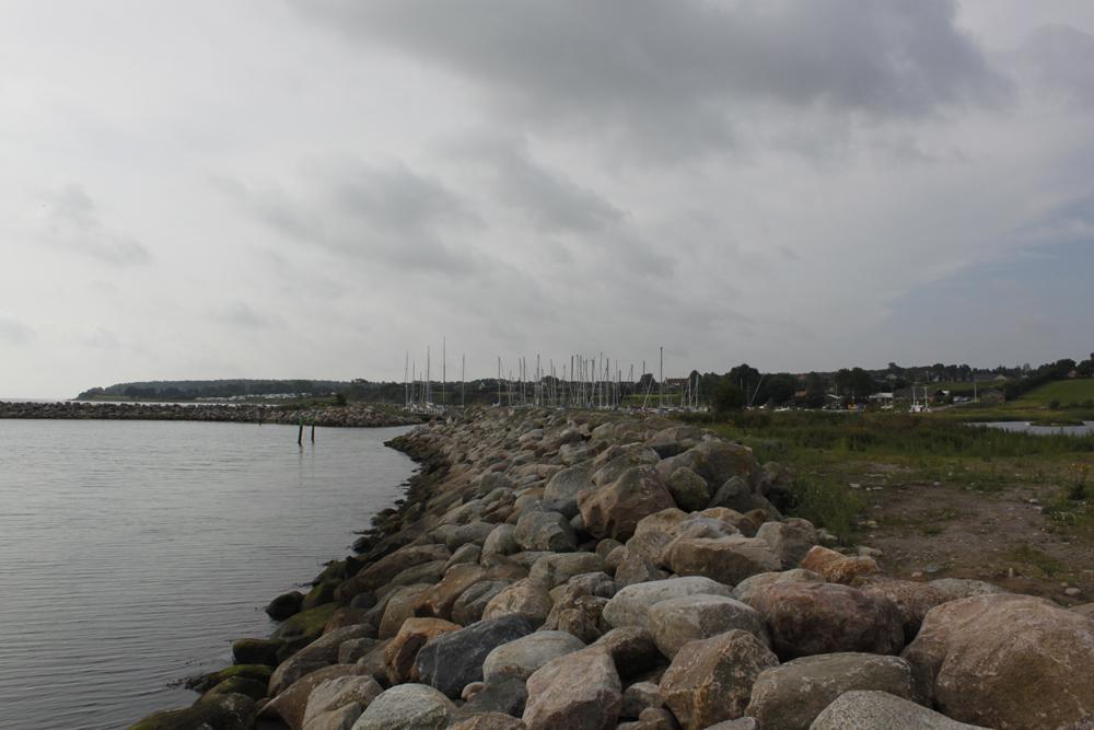 Koiranpennun hakumatkalla Tanskassa 6