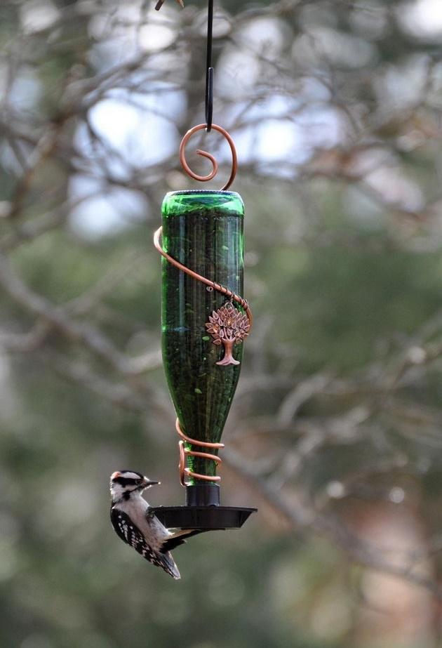 Comedouro/bebedouro para pássaros 2