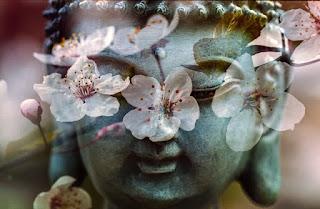 Boudha, Feng Shui, harmonie de la maison