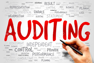 14 Important Definitions Of Auditing