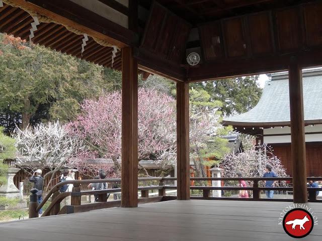 Temple umenomiya de Kyoto