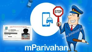 How to download Virtual Driving licence using App