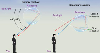 contoh explanation text about rainbow