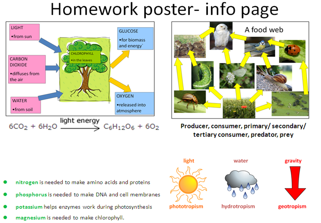 Year 9 Science Revision Poster Homework Due Monday 13th May