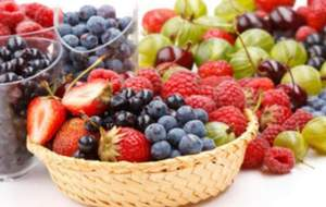 دراسة جدوى فكرة مشروع أنتاج أطباق الفواكه من مخلفات الورق فى مصر 2020