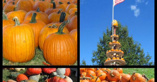 Pumpkins, Skeletons and Monsters: OH MY!