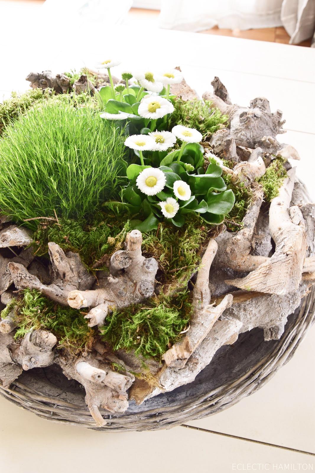 Frühlingsdeko basteln mit Naturmaterialien selber machen mit Moos, Holzkranz Bellis, Natur, Deko für den Frühling