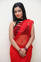 Aasma Syed in Red Saree Sleeveless Black Choli Spicy Pics ~  Exclusive Celebrities Galleries 088.jpg