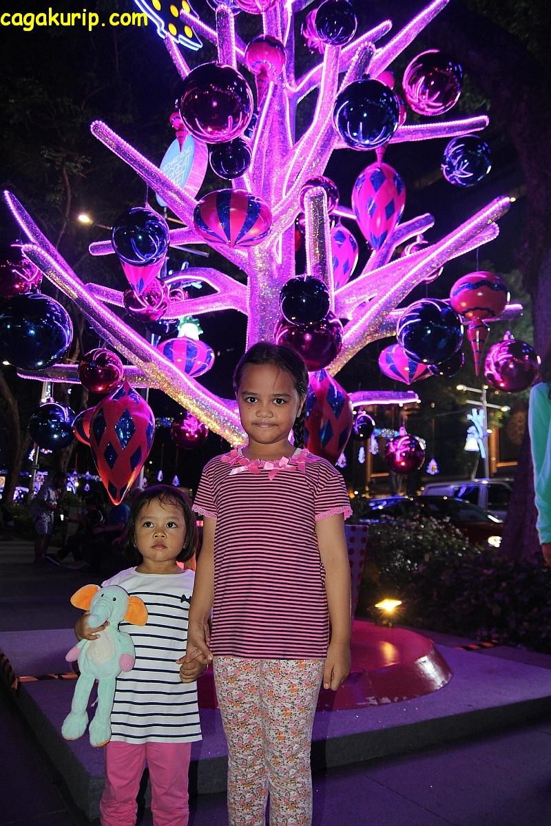 Di bawah pohon warna-warni
