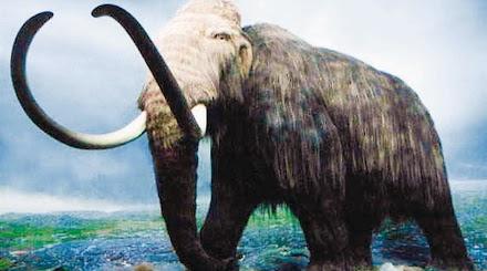 Η κλιματική αλλαγή εξαφάνισε τα μαμούθ από την Ευρώπη