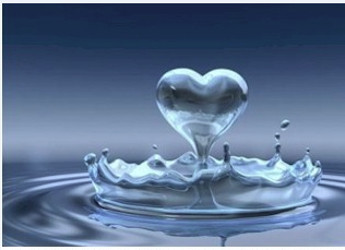 Water Ionizer | Water Purification Applicances