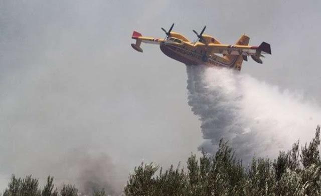 Η Γερμανία δεν διαθέτει πυροσβεστικά αεροπλάνα και δεν αναμένεται να αποκτήσει