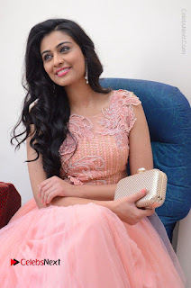 Actress Neha Hinge Stills in Pink Long Dress at Srivalli Teaser Launch  0070.JPG