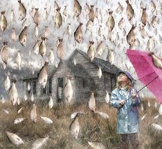 Llueven peces