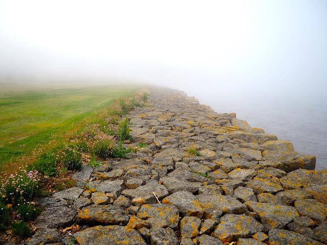 Haar coastal fog by the coast in Dalmeny Estate Shore Walk in north Edinburgh