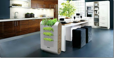Green Kitchen: Tips For Going Green In The Kitchen (Green Living)