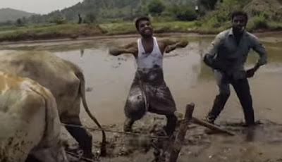 Petani asal India yang terkenal di dunia