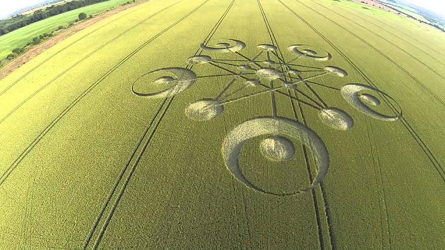 Sejak 1980-an Sudah 12.000 Crop Cirgle Yang Ditemukan Di Seluruh Dunia