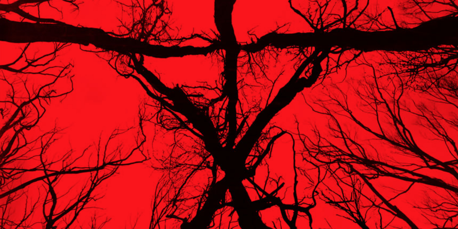 MOVIES: Blair Witch - Review