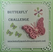 Butterfly Challenge!