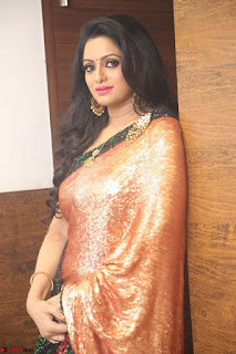 Udaya Bhanu lookssizzling in a Saree Choli at Gautam Nanda music launchi ~ Exclusive Celebrities Galleries 126.JPG
