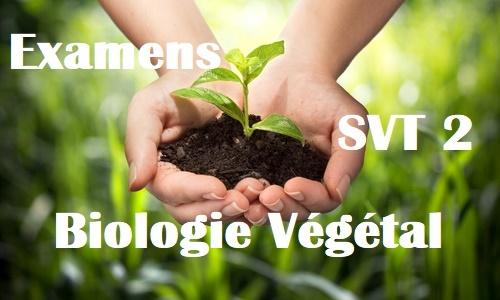 Examens corrigés de Biologie Végétale SVT Semestre S2 PDF