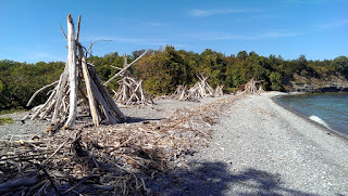 Little Bluff Conservation - Driftwood Teepee