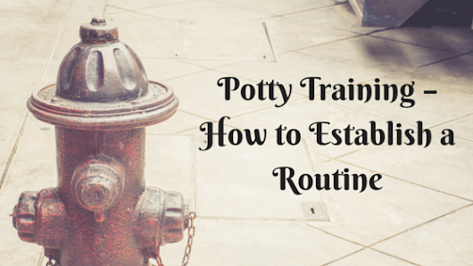 Potty Training – How to Establish a Routine