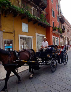 Romantic Horse and Carriage Verona Italy