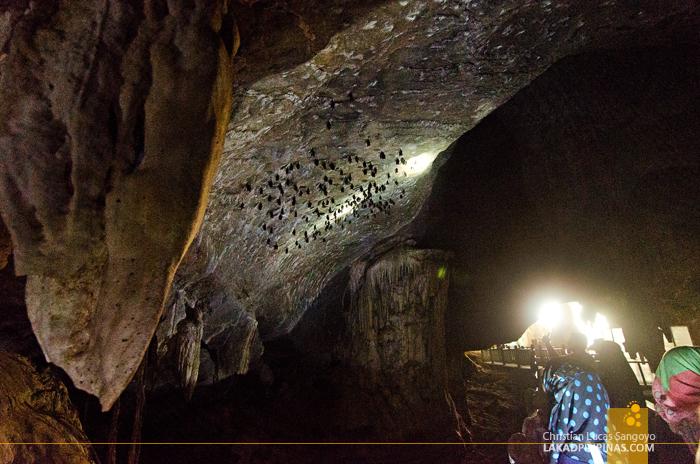 Kilim Karst Geoforest Park Langkawi Bat Cave
