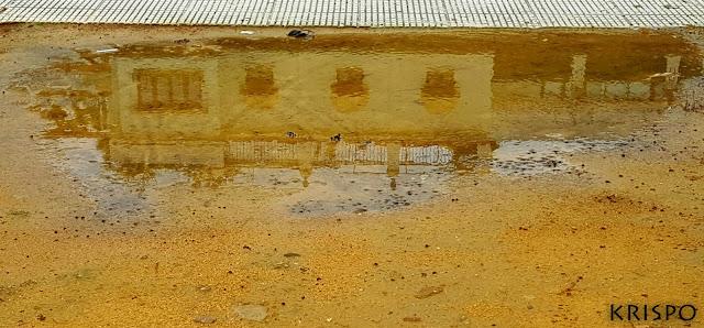 casa típica sevillana reflejada en un charco del parque