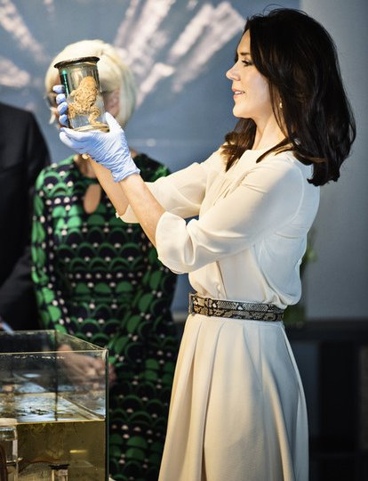 "Crown Princess Mary of Denmark attends the official opening of ""2016 Danish Research Festival"" held at the Zoological Museum of Copenhagen"