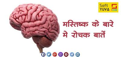 मानव मस्तिष्क  के बारे में कुछ रोचक बाते   Interesting  Human Brain Facts in Hindi